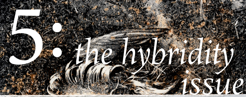 Enter Issue 5: The Hybridity Issue